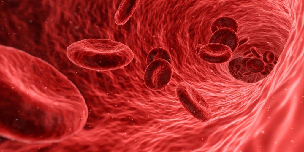blood in arteries